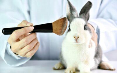 Cruelty free vagy vegán – Melyik mit jelent? Mikor megbízható egy termék?